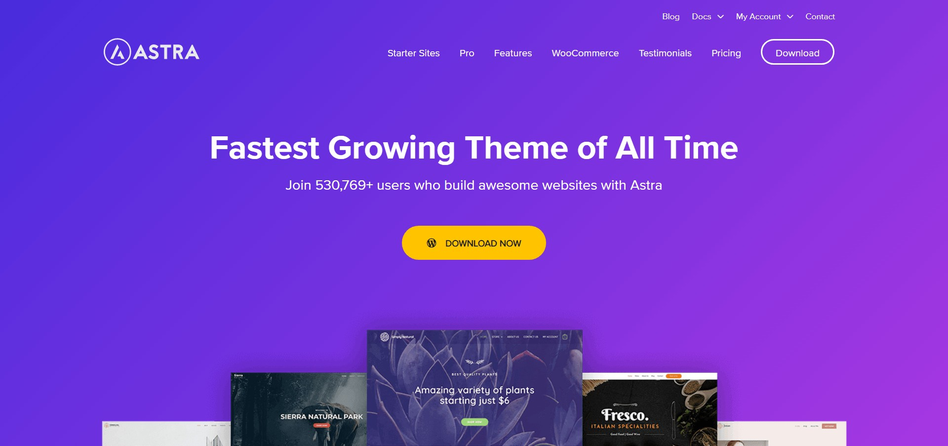 Astra WordPress Theme 2020