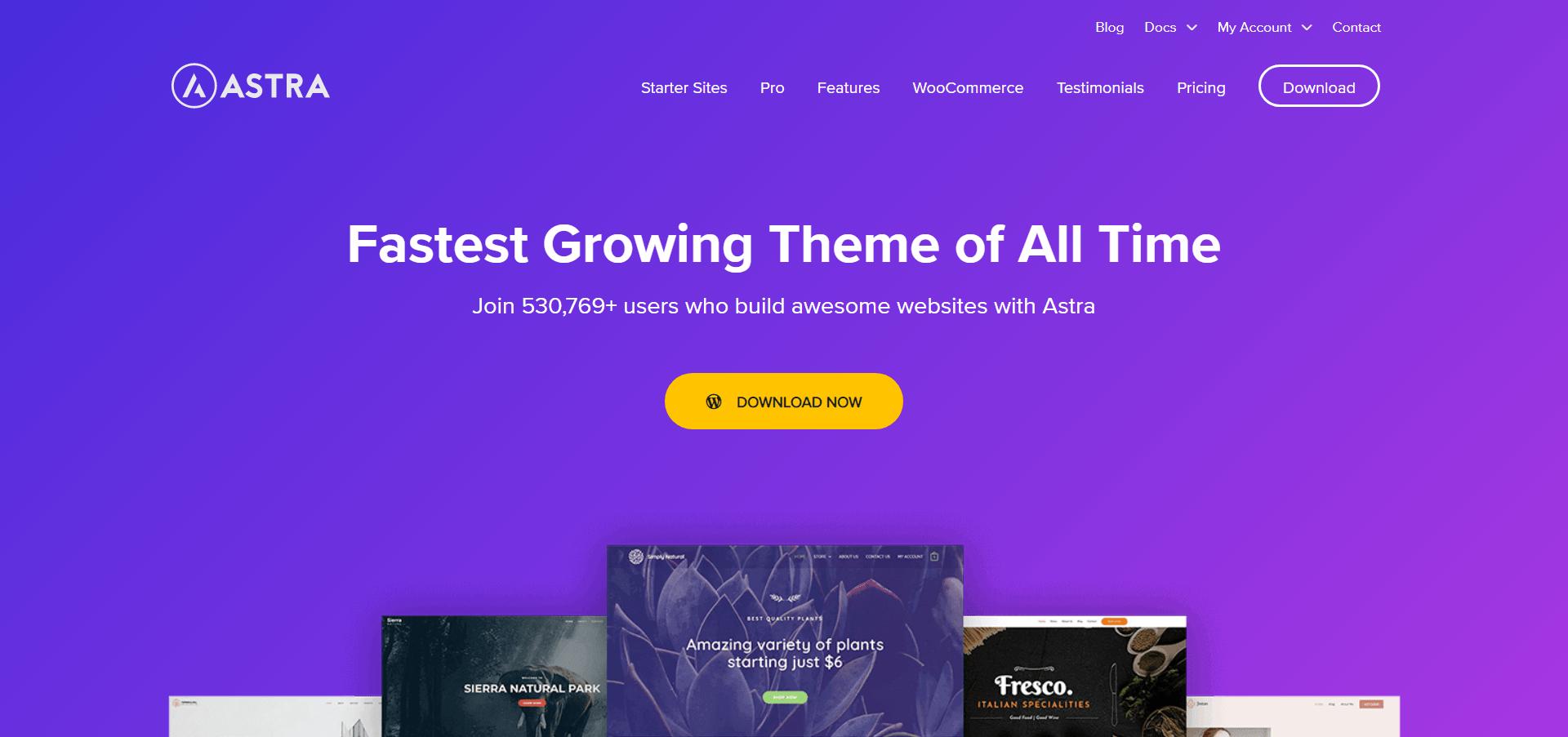 Astra WordPress Theme 2020